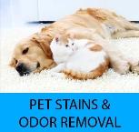 Pet Stain, Pet Urine, and Pet Odor Removal Lemon Grove Ca