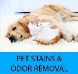 Pet Stain, Pet Urine, and Pet Odor Removal Santee Ca